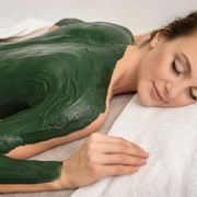 Body wrap with algae