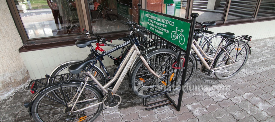 Spa Hotel Central - bike rental for a fee