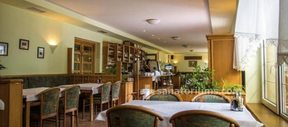Spa Hotel Jirasek - restaurant