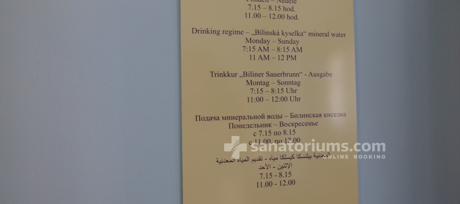 Spa Hotel Beethoven - drinking cure