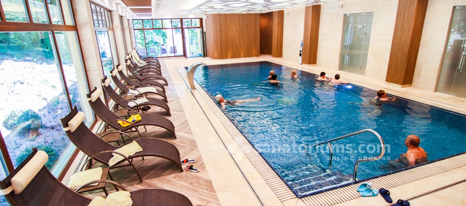 Spa Hotel Svoboda - swimming pool and rest area